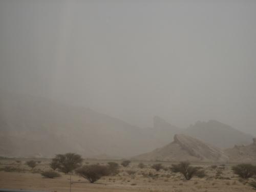 Kenya May 2010 1 596