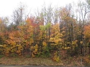 Trip to White Mountains 2 Oct. 8, 2012 039