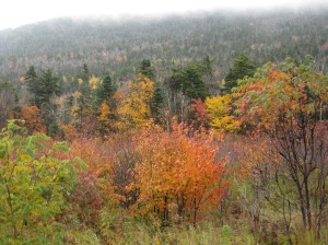Trip to White Mountains 2 Oct. 8, 2012 053